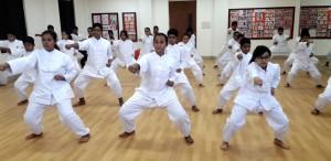 BIT-Martial-Arts-33